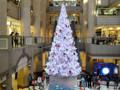 横浜 ランドマークタワー クリスマスツリー