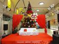 長崎空港 クリスマスツリー