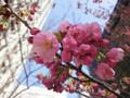 20120402 赤坂見附の桜