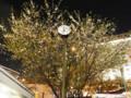 20120405 夜 赤坂見附の桜