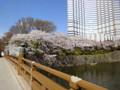 20120406 弁慶橋 赤プリ 桜