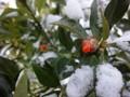 140102 朝 積雪