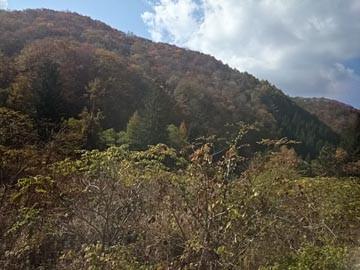 JR山田線 車窓風景 141019