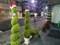 鉢植え クリスマス