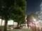 山王パークタワー前 街路樹