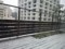 150130 東京 積雪