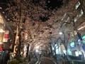 150331 夜桜 渋谷区桜丘町