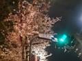 150403 九段坂上 桜