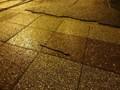 歩道 雨降り ミミズ