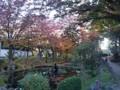 151019 盛岡城跡公園 紅葉