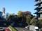 151116 赤坂豊川稲荷 銀杏