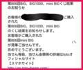 BIG 当選お知らせメール