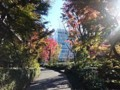 赤坂センタービルディング 敷地内