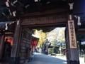 151105 赤坂豊川稲荷 大銀杏
