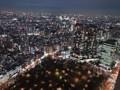 東京都庁 南展望台 夜景