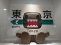 どーもくん 東京駅 NHKショップ
