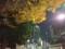 161203 紅葉 東京 夜