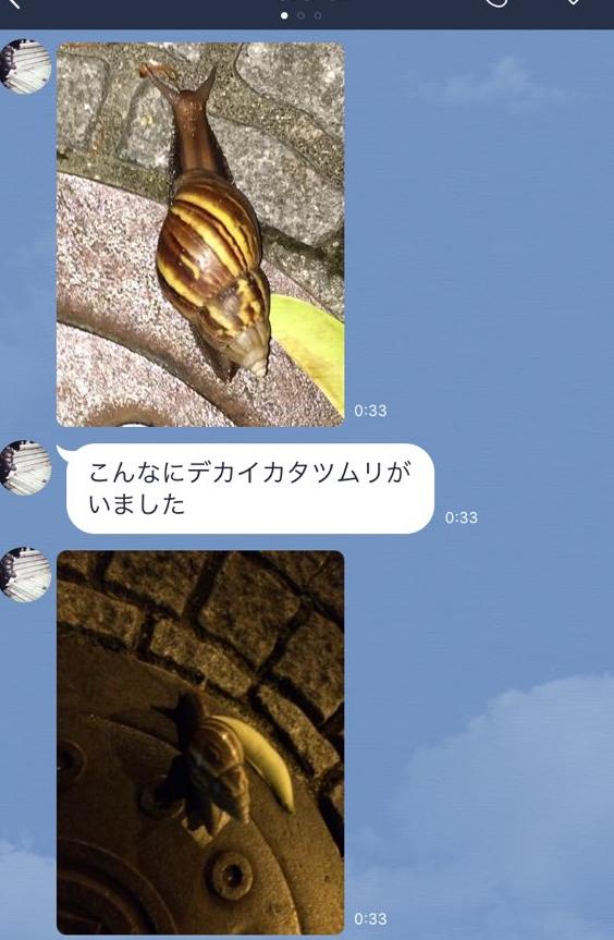 f:id:TETSU_KYOTO_JPN:20160501174511j:plain