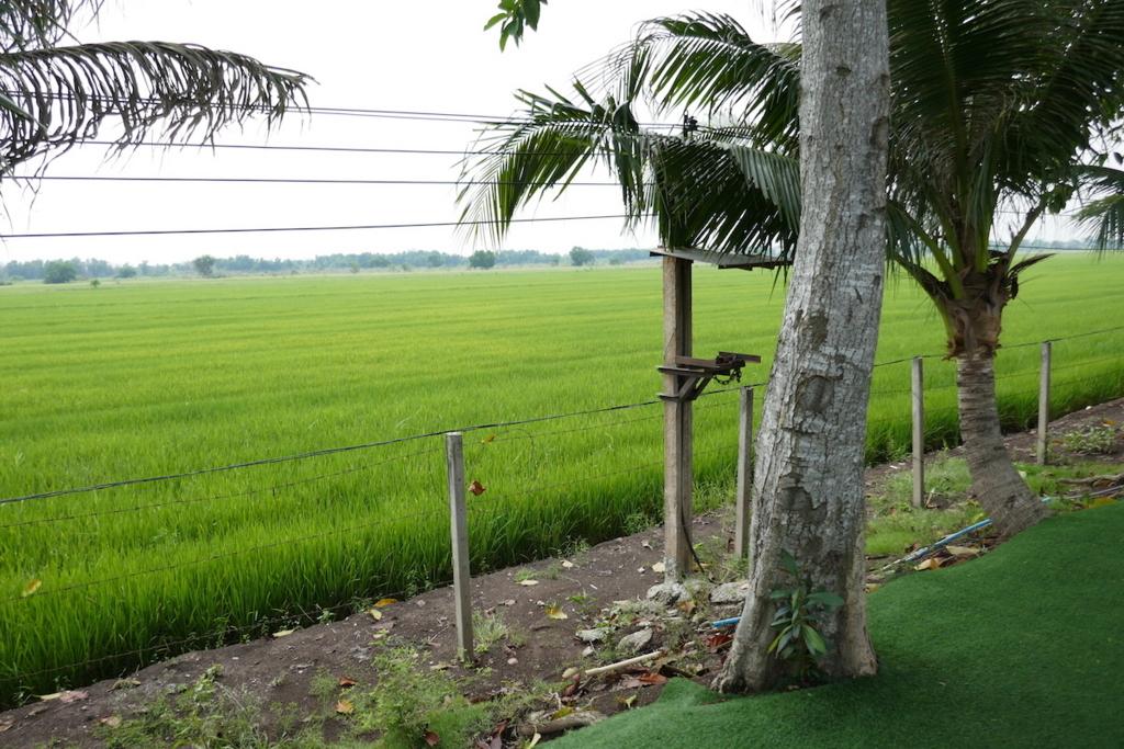 f:id:THAILAND:20180313023000j:plain