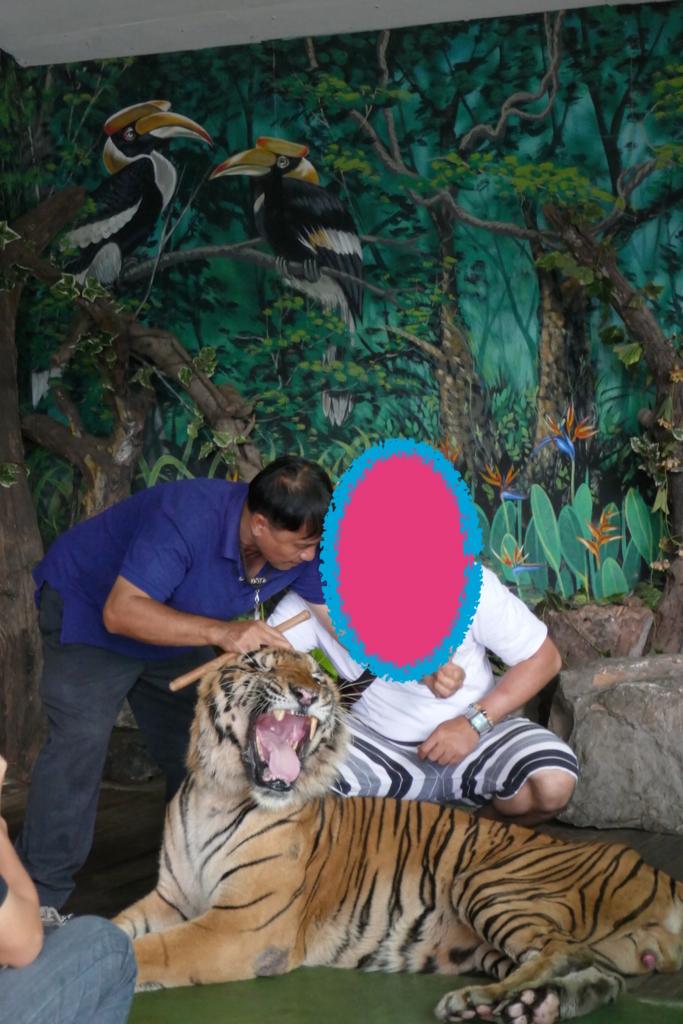 f:id:THAILAND:20180408031435j:plain