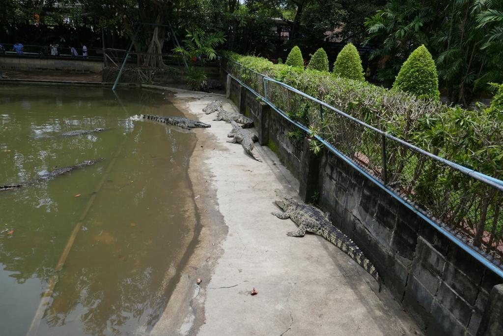 f:id:THAILAND:20180411181455j:plain