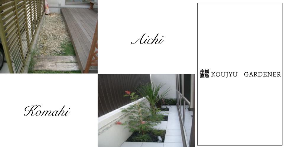 f:id:THS-Koujyu:20200225131921j:plain