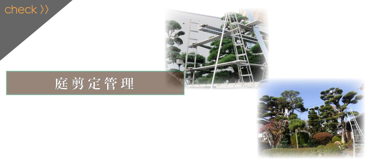 f:id:THS-Koujyu:20210326153219j:plain