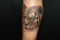 [東京][渋谷][都内][タトゥー][刺青][画像][デザイン][動物][虎・トラ][脚]