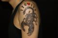 [東京][渋谷][都内][タトゥー][刺青][画像][デザイン][蠍・サソリ][腕][甲殻類]