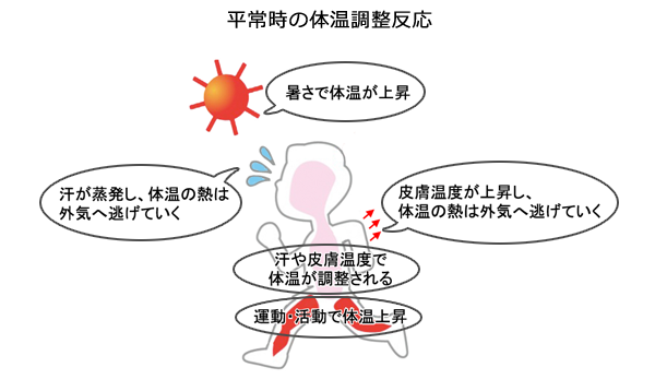 f:id:TIshikiBukuro:20210716150535p:plain