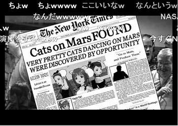 Cats on Mars2