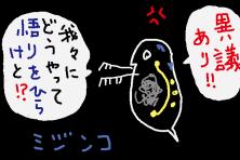 f:id:TODAWARA:20191017152525j:plain