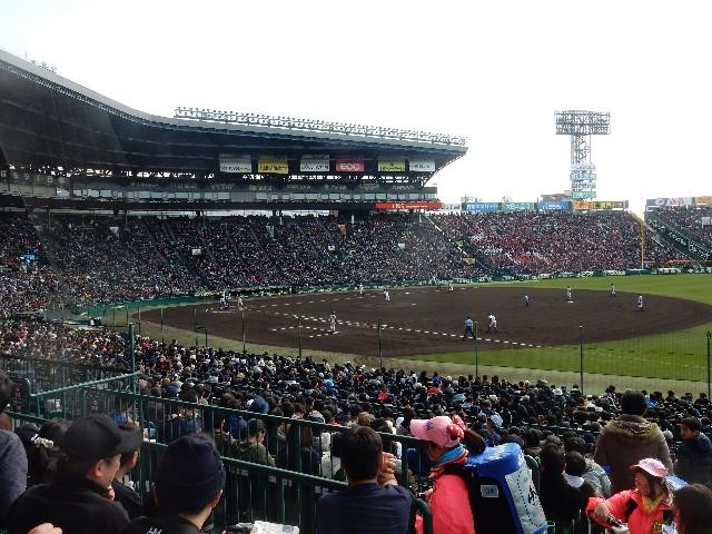 f:id:TOKYOOHSHO:20200229064741j:image
