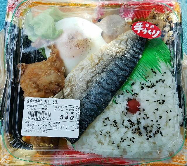f:id:TOMOYASU:20160903152503j:image