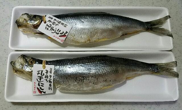 f:id:TOMOYASU:20161101103757j:image