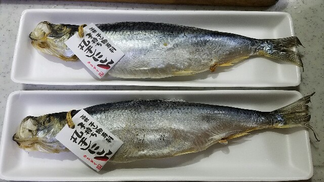 f:id:TOMOYASU:20170111121521j:image