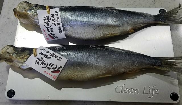 f:id:TOMOYASU:20170913062148j:image