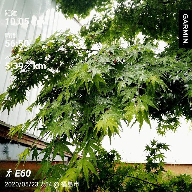 f:id:TOMSAI:20200526125848j:plain