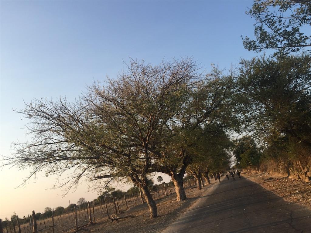 f:id:TPVC28-Namibia:20160805150445j:image