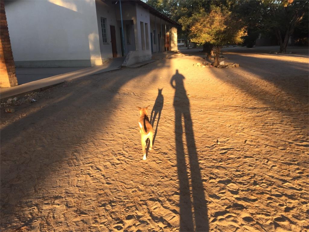 f:id:TPVC28-Namibia:20160807171428j:image