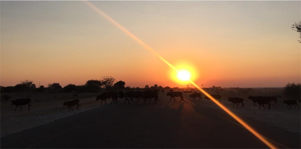 f:id:TPVC28-Namibia:20160811051844j:image