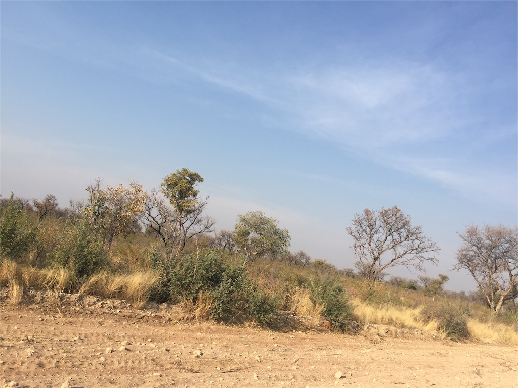 f:id:TPVC28-Namibia:20160822023810j:image