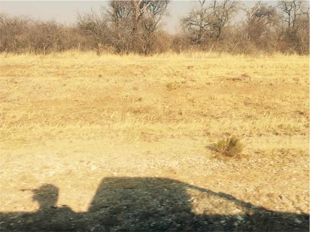 f:id:TPVC28-Namibia:20160822054114j:image