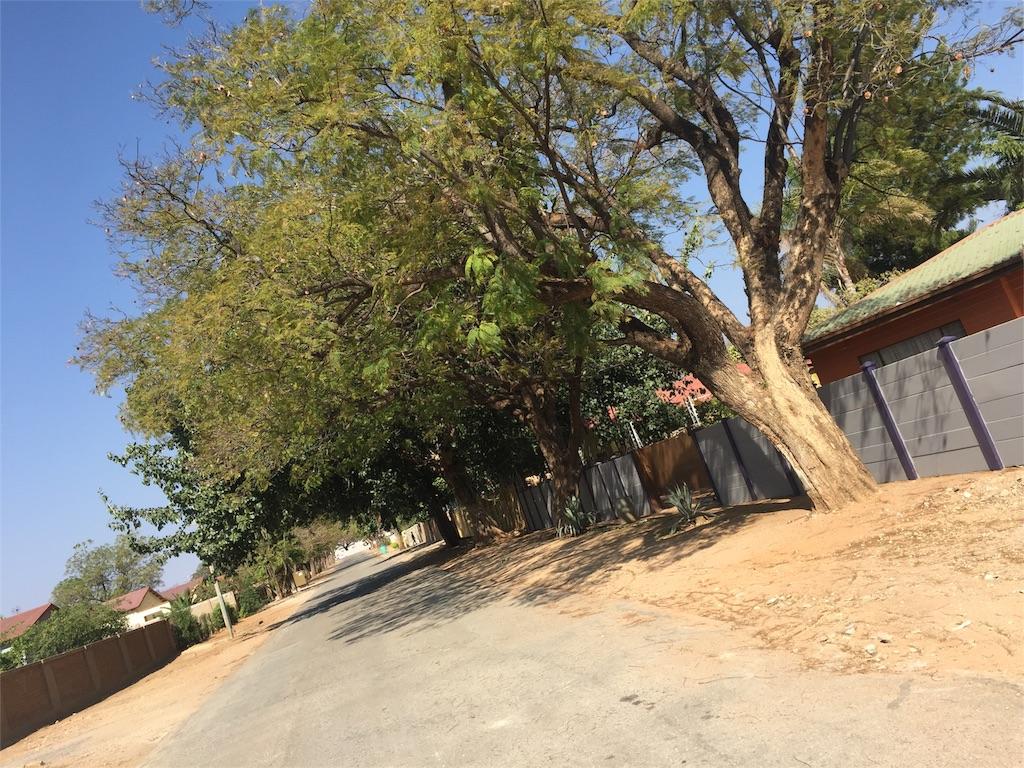 f:id:TPVC28-Namibia:20160823021233j:image
