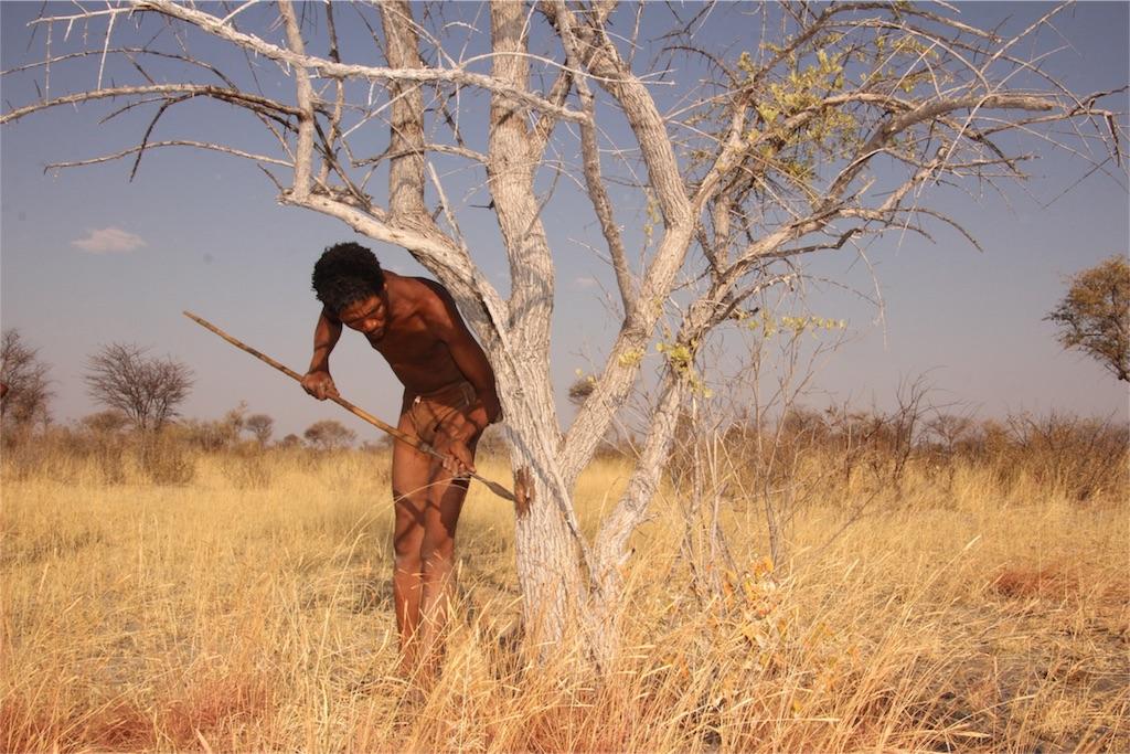 f:id:TPVC28-Namibia:20160823200719j:image