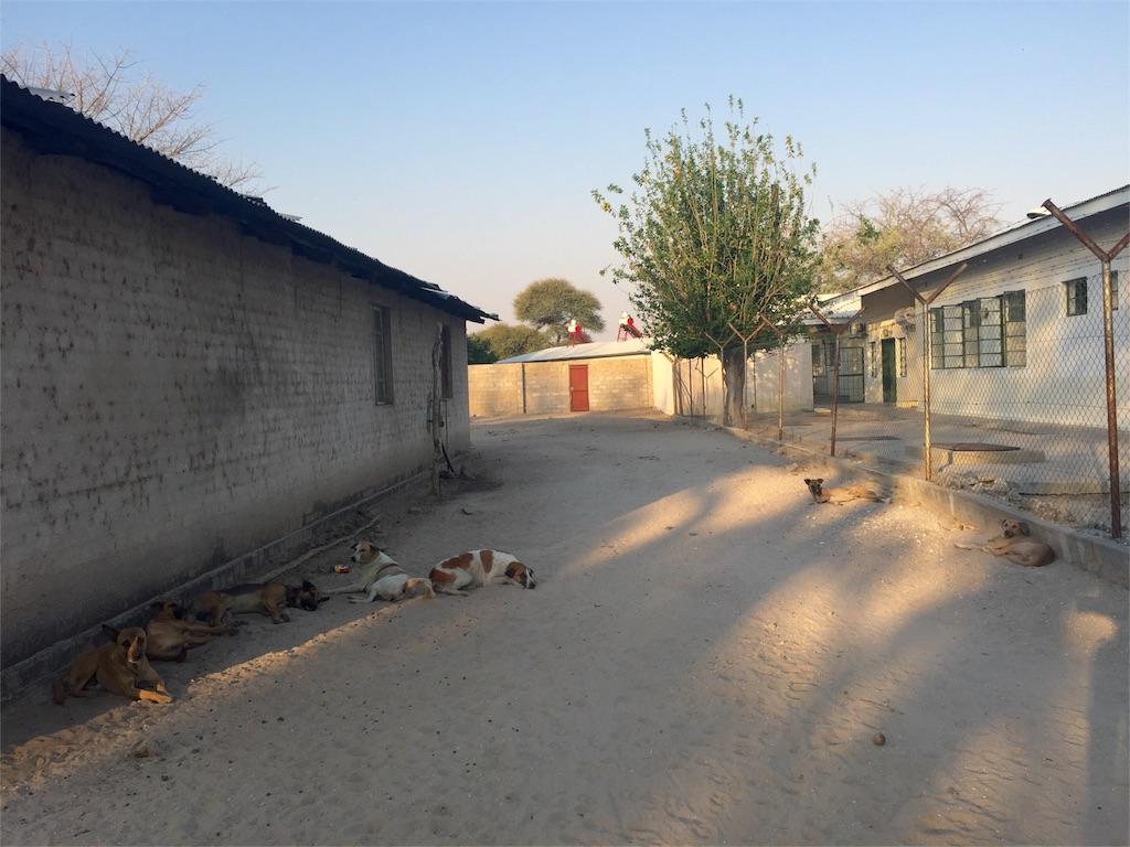 f:id:TPVC28-Namibia:20160901062751j:image