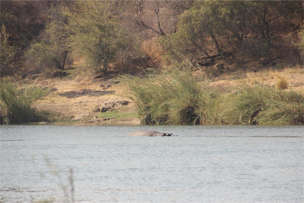 f:id:TPVC28-Namibia:20160906050956j:image