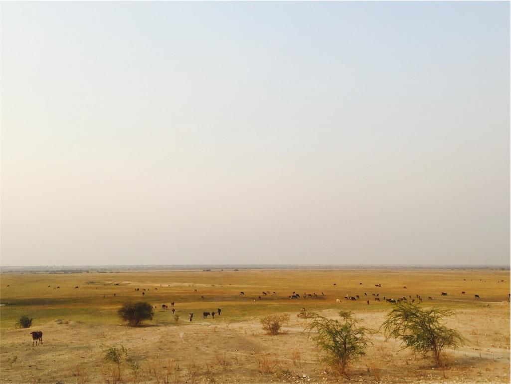 f:id:TPVC28-Namibia:20160917155558j:image