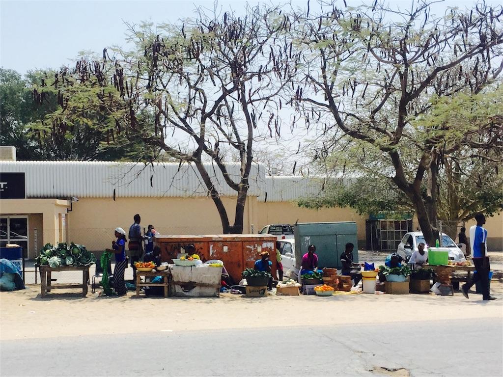 f:id:TPVC28-Namibia:20160919220512j:image