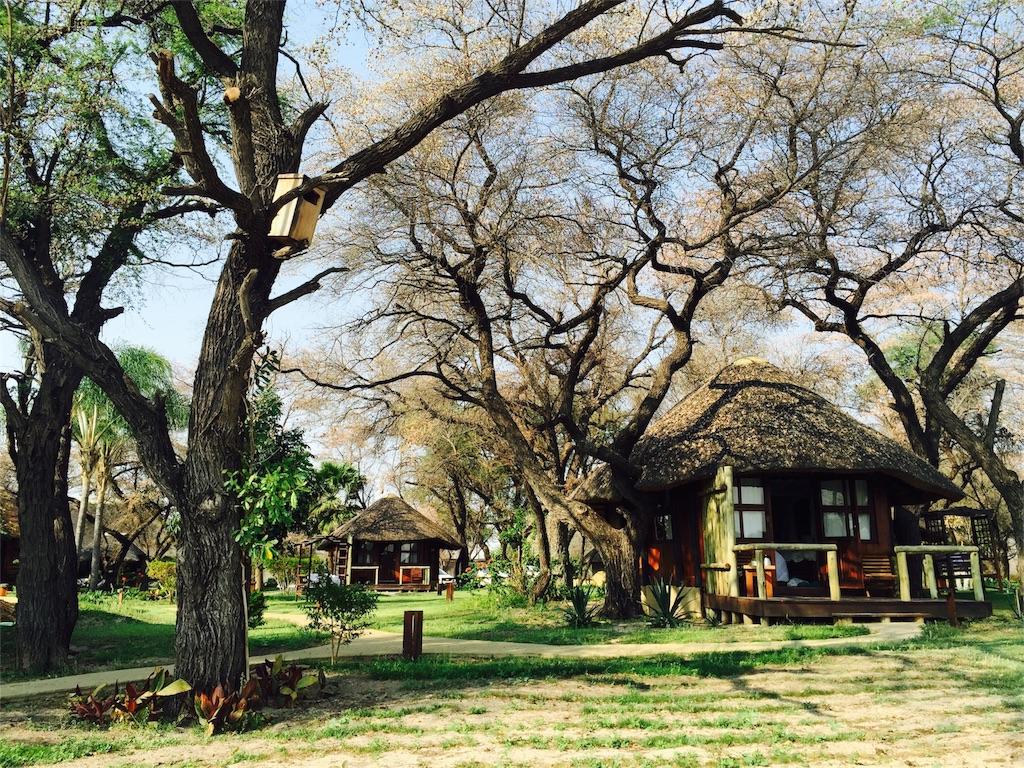 f:id:TPVC28-Namibia:20160920172250j:image